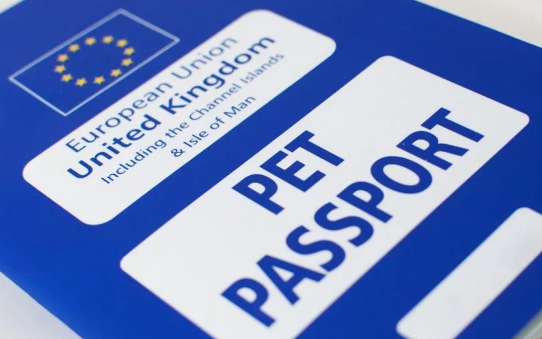 Taking your dog abroad: the pet passport scheme.